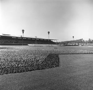 """""""Santa Anita Racetrack"""" circa 1955 © 1978 Herman V. Wall  - Image 13607_0003"""