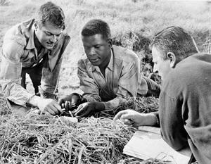 """The Defiant Ones""Tony Curtis, Sidney Poitier & Dir. Stanley Kramer1958 MGM**I.V. - Image 1369_0012"