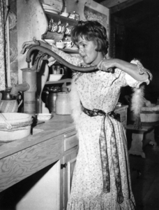 """""""The Unsinkable Molly Brown""""Debbie Reynolds1964 - Image 13800_0001"""