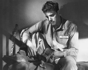 """The Killers""Burt Landcaster 1946 Universal**I.V. - Image 1430_0025"