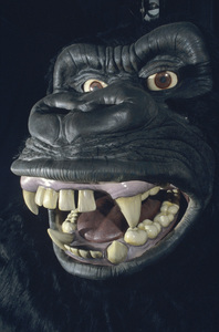 King Kong (Universal Studios attraction)1986 © 1986 Gene Trindl - Image 14387_0002