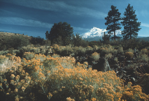 Scenics (Mountains)Grand Tetons 1971 © 1978 Sid Avery - Image 14811_0003