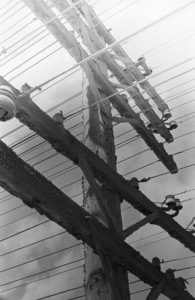 Telephone polescirca 1970s© 1978 Ed Thrasher - Image 16097_0003