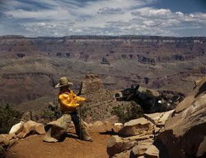 Landscapes (Grand Canyon)circa 1965© 1978 Sid Avery - Image 16097_0005