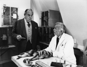 """""""The Human Factor""""Robert Morley (with cast member and monkey on table)1979© 1979 John Jay - Image 16287_0008"""