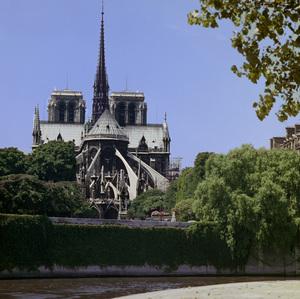 Paris (Notre Dame)circa 1950s© 1978 Paul Hesse - Image 16406_0004
