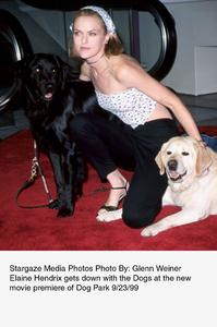 """Dog Park"" Premiere,Elaine Hendrix.  9/23/99. © 1999 Glenn Weiner - Image 16692_0102"
