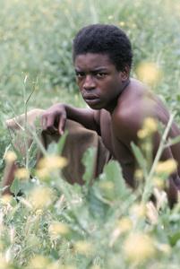 """""""Roots""""LeVar Burton1977** H.L. - Image 17658_0016"""