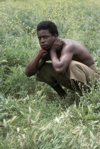 """""""Roots""""LeVar Burton1977** H.L. - Image 17658_0017"""