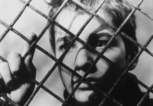 """""""400 Blows, The""""Jean-Pierre Leaud1959 Zenith International**I.V. - Image 18531_0001"""
