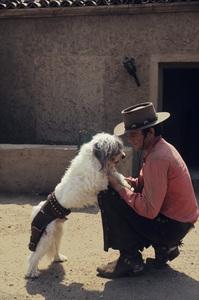 """""""Lancer""""James Stacy1968© 1978 Gene Trindl - Image 1898_0005"""