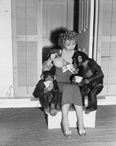 """Ann Sothern in """"Congo Maisie""""1940 MGM** I.V/M.T. - Image 1957_0635"""