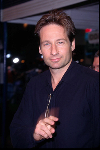 David Duchovny attends the premiere of Bandits held at the Mann Village theater in Westwood Ca. 10/04/01 © 2001 Glenn Weiner - Image 19588_0110