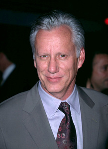 James Woods at the world premiere of Domestic Disturbance held on the Paramount studios lot in Hollywood California. 10/30/01. © 2001 Glenn Weiner - Image 19661_0111