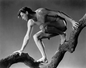 """Tarzan And His Mate""Johnny Weissmuller1934 MGM / Photo by Harvey White**I.V. - Image 19709_0001"