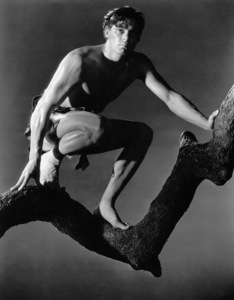 """Tarzan And His Mate""Johnny Weissmuller1934 MGM / Photo by Harvey White**I.V. - Image 19709_0002"