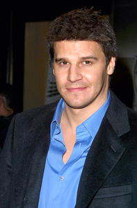 David Boreanaz star of  the show Angel attends the WB Network party in Pasadena California 1/15/02 © 2002 Glenn Weiner - Image 19805_0113