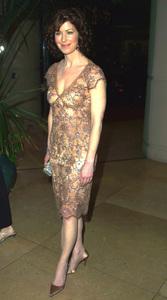 """Hair and Make-up Awards: 3rd Annual"" 2/17/02Dana Delaney © 2002 Glenn Weiner - Image 20136_0108"