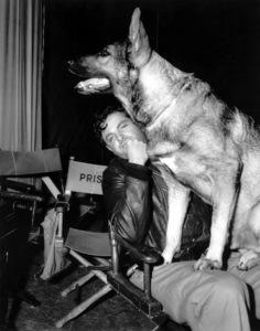 """Saboteur""Robert Cummings and dog1942 Universal**I.V. - Image 21298_0009"