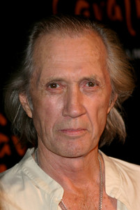 David Carradine arrives at the Opening Night for Cavalia Magical Encounter between Horse & Man at the Santa Monica Pier in Santa Monica,California 11/10/04 MPTV - Image 21590_0920