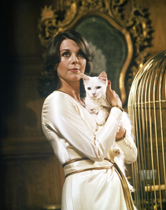 """Peeper""Natalie Wood1975 Twentieth Century Fox** I.V. - Image 22614_0001"