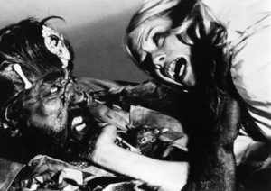 """The Hills Have Eyes""1977 Vanguard** I.V. - Image 23006_0002"