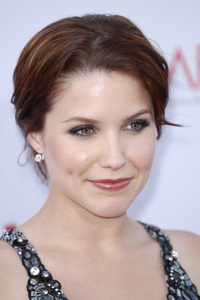 """35th Annual AFI Life Achievement Award Honoring Al Pacino""Sophia Bush06-07-2007 / Kodak Theatre / Hollywood, CA / Photo by Andrew Howick - Image 23094_0018"