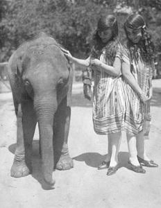 Violet and Daisy Hilton with baby elephantcirca 1920s** I.V. - Image 23543_0014