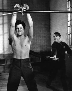 """""""Jailhouse Rock""""Elvis Presley1957 MGM** I.V. - Image 23705_0011"""
