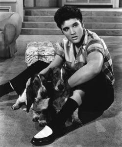 """""""Jailhouse Rock""""Elvis Presley1957 MGM** I.V. - Image 23705_0032"""