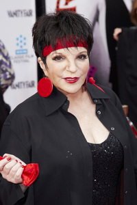 """""""40th Anniversary Restoration of Cabaret"""" Premiere Liza Minnelli4-12-2012 / Grauman Chinese Theater / TCM Film Festival / Hollywood CA / Photo by Kevin Kozicki - Image 24206_0089"""