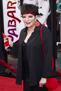 """""""40th Anniversary Restoration of Cabaret"""" Premiere Liza Minnelli4-12-2012 / Grauman Chinese Theater / TCM Film Festival / Hollywood CA / Photo by Kevin Kozicki - Image 24206_0094"""