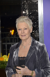 """The Best Exotic Marigold Hotel"" Premiere Judi Dench4-23-2012 / Ziegfeld Theater / Fox Searchlight / New York NY / Photo by Eric Reichbaum - Image 24210_0100"