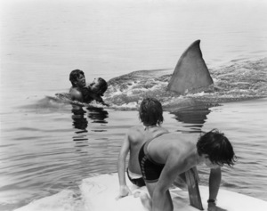 """Ted Grossman in """"Jaws""""1975 Universal** B.D.M. - Image 24293_0161"""