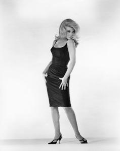 Ann-Margretcirca 1965** B.D.M. - Image 24293_0255