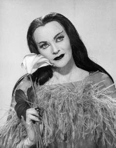 "Yvonne De Carlo in ""Munster, Go Home!""1966 Universal** B.D.M. - Image 24293_0293"