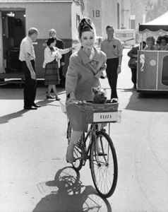 """Audrey Hepburn and her dog Famous on the Warner Bros. lot during filming of """"My Fair Lady""""1964 Warner Bros.** B.D.M. - Image 24293_0295"""