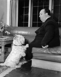 Alfred Hitchcock1942 Universal ** B.D.M. - Image 24293_0362