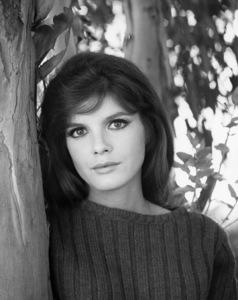 Katharine Rosscirca 1967** B.D.M. - Image 24293_0412