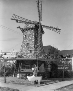 Los Angeles Landmarks (Van de Kamp