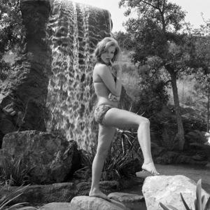 Karen Jensencirca 1967** B.D.M. - Image 24293_0960
