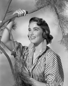 Julie Adamscirca 1952** B.D.M. - Image 24293_1063