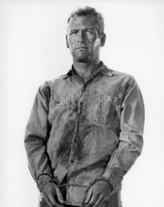 "Paul Newman in ""Cool Hand Luke""1967 Warner Bros.** B.D.M. - Image 24293_1331"