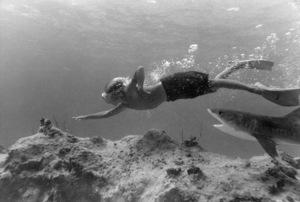 "Luke Halpin in ""Flipper""1963 MGM** B.D.M. - Image 24293_1338"