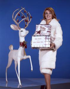 "Ann-Margret in ""Bye Bye Birdie""1963 - Image 24293_1485"