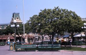 Disneyland, Anaheim, California1968** B.D.M. - Image 24293_1726