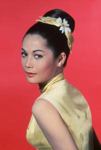 """Nancy Kwan in """"Flower Drum Song""""1961 Universal** B.D.M. - Image 24293_1881"""