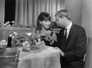 """Stefanie Powers and Troy Donahue in """"Palm Springs Weekend""""1963  Warner Bros.** B.D.M. - Image 24293_2559"""