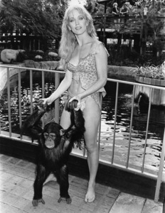 """""""Sheena: Queen of the Jungle"""" star Tanya Roberts at the Disneyland Hotel for a photo session and to sign autographs for the members of the National Theater Owners AssociationNovember 1, 1983** B.D.M. - Image 24293_2610"""