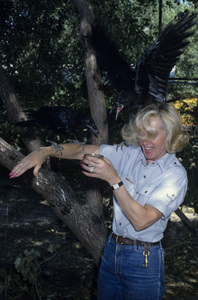 Tippi Hedrencirca 1970s© 1978 Gary Lewis - Image 24300_0031